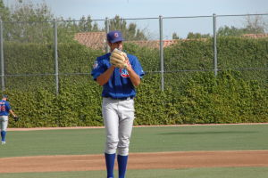 Daytona Cubs Baseball Maestri Mlb (132)