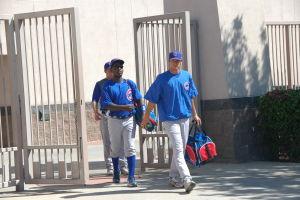 Daytona Cubs Baseball Maestri Mlb (151)