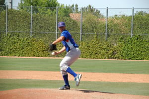 Daytona Cubs Baseball Maestri Mlb (29)