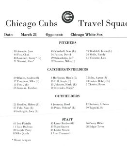 Travel Squad Cubs