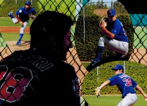 Collage Cubs