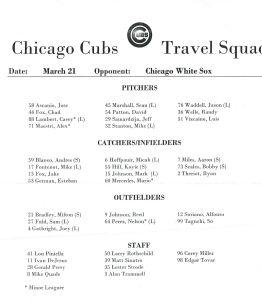 Travel Squad Cubs